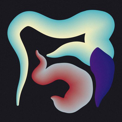 Shape Study designed by Tobias Heumann – Visual Designer